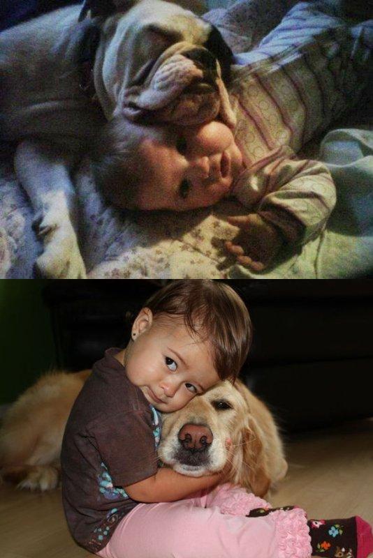 Enfant ; Animal