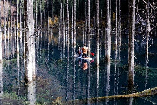 Forêt enchantée par Dina Julayeva