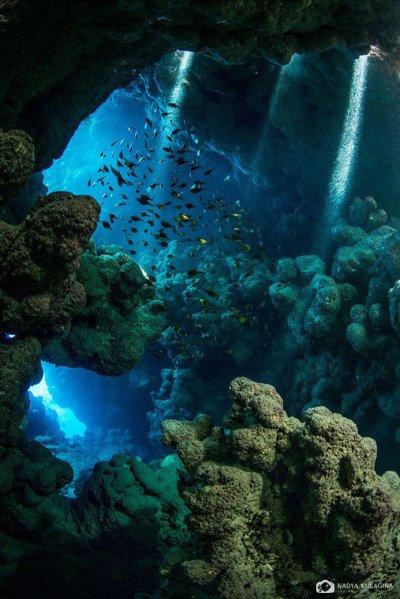 Egypte  des rayons de soleil sous-marin