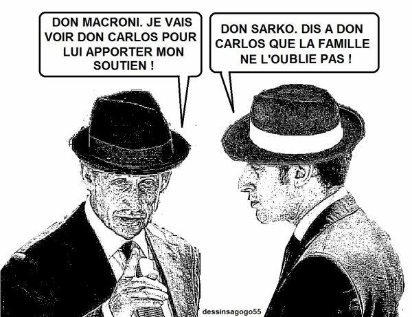 Sarkozy a rendu visite à Ghosn au Japon, avec l'aval de Macron