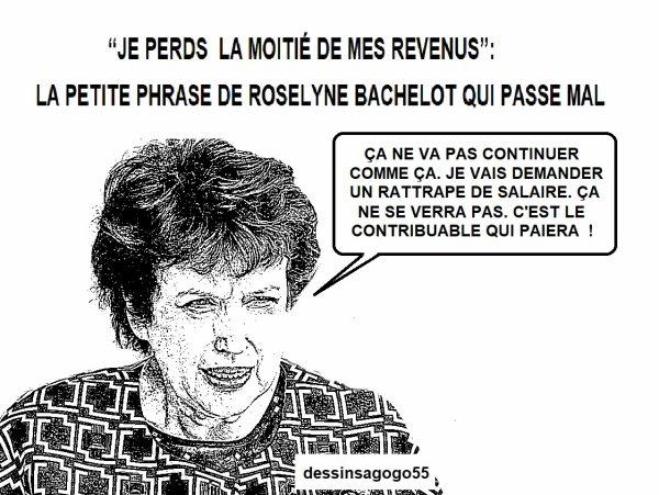 """""""Je perds la moitié de mes revenus"""": la petite phrase de Roselyne Bachelot qui passe mal"""