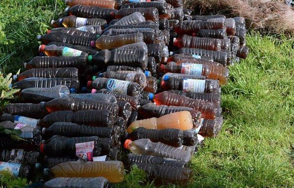 Un monde fou : 340 bouteilles remplies d'urine