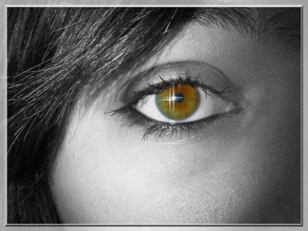 Chaque regard est différent..