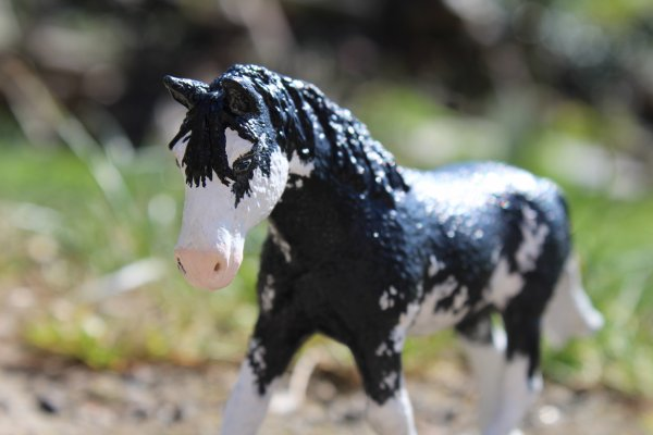 Narkylae [Pour Sell-Hippies-Schleich]