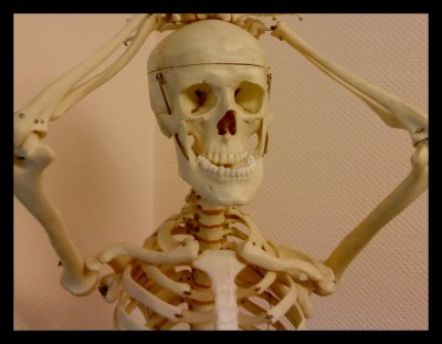Oscar le squelette