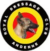 Andennedressage