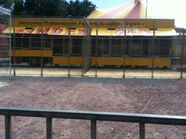 La cage centrale