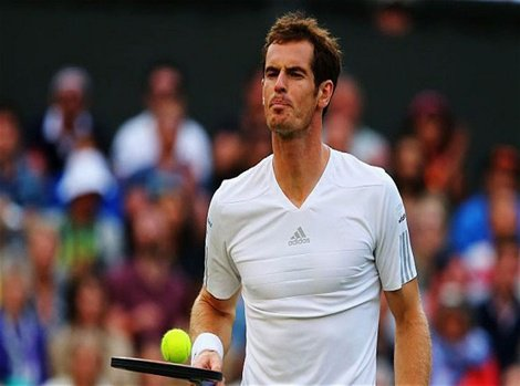 Andy Murray lost the quarter finalof the Wimbledon   Sports Updates