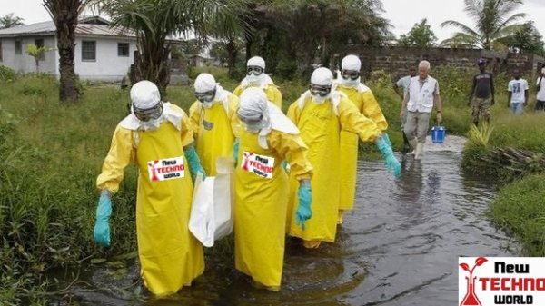 http://newtechnoworld.com/ebola-liberian-wellness-employees-plan-strike-world-news/