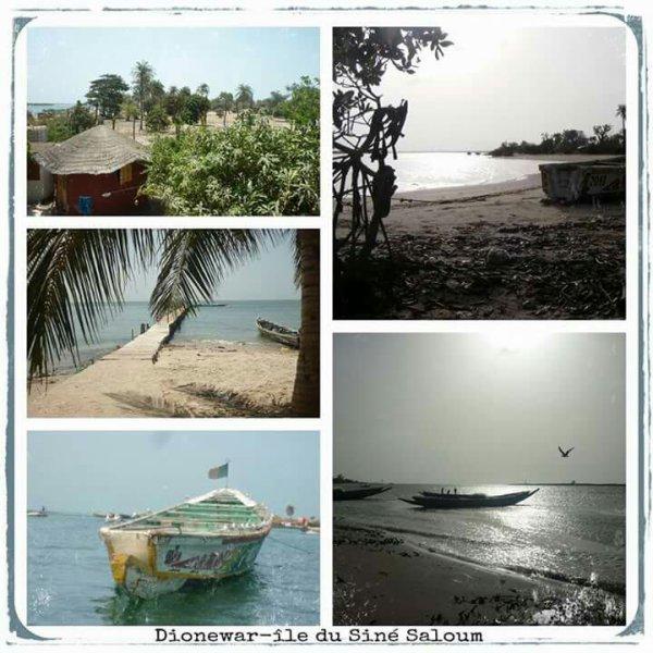 Nous vous proposons aujourd'hui la découverte de Dionewar,une des plus belles îles de l'archipel du Siné Saloum,où les habitants vivent en complète autarcie au niveau pêche et agriculture. Pas de véhicules à moteur, circulation uniquement en calèche,à dos d âne ou à pieds. Un dépaysement assuré dans un lieu calme loin des circuits touristiques,au travers des jolies plages de sable fin et d'une eau à la température plus qu'agréable ... Pour s'y rendre,un seul contact :  Marcel Birame Sene qui vous conduira à l embarcadère de Djiffer,à 180 km de Dakar, puis qui vous accompagnera pour une navigation subtile d'environ 40 minutes en pirogue...  Joli programme non ?