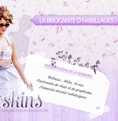 bienvenue sur sweetskins, une brocante d'habillages :)