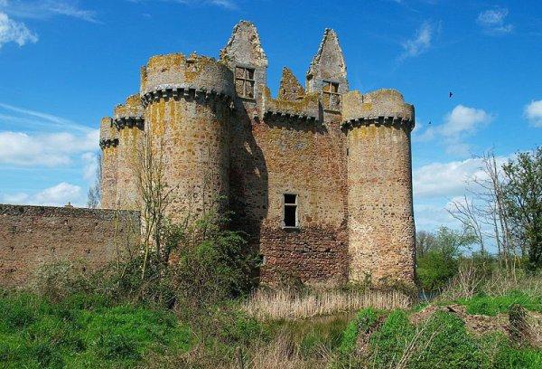 Ruine du château de l'Ebaupinay