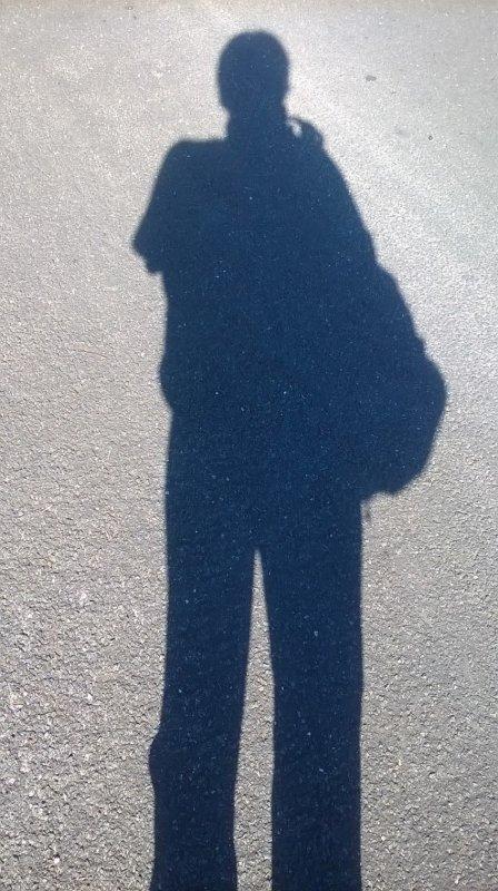 Devinez à qui appartient cette ombre !