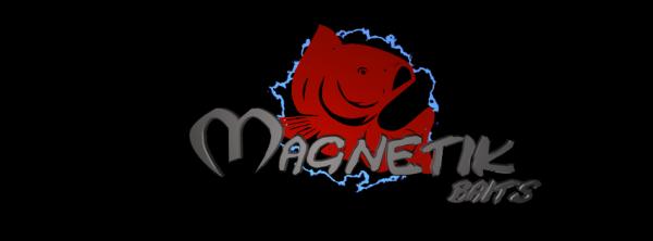 Magnetikbaits@sfr.fr