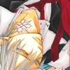 Manga : vampire knight