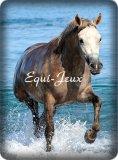 Photo de Equi-Jeux