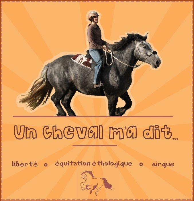 ~ Un Cheval m'A Dit ~