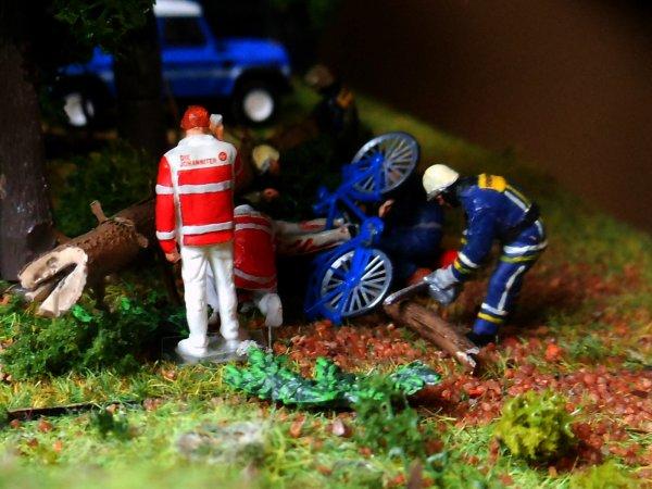 Un cycliste chute en forêt