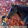 La-Fontaine-de-Jouvence