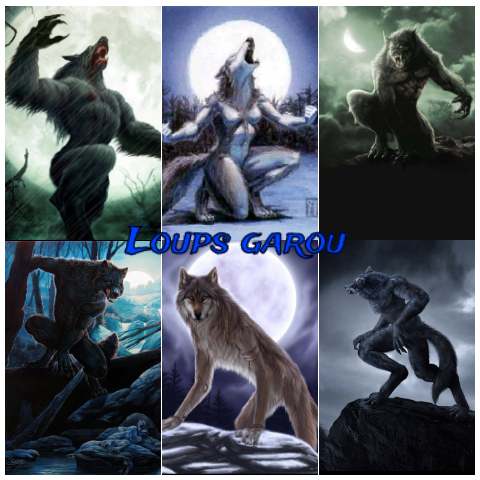 Loups garou