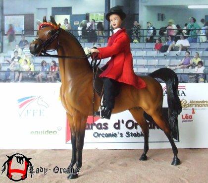 Premier vrai saddle seat pour Twist