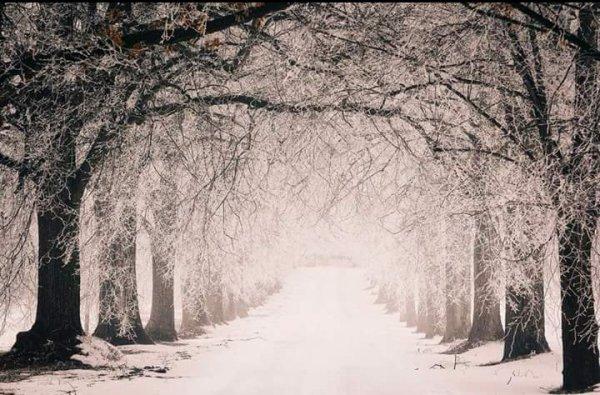 Petite promenade c juste magnifique