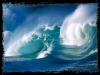 Caprice de L'Ocean