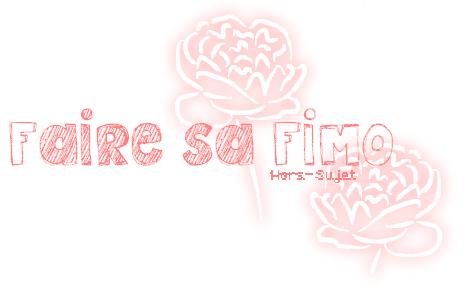 HORS-SUJET: Faire sa pâte FIMO.