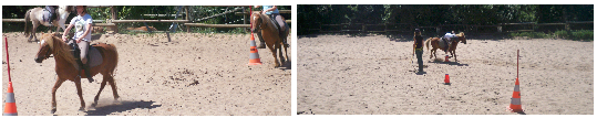 Stage de Pony-Games.