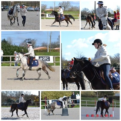 Concours de Pony-Games