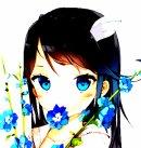 Photo de Manga-zolie-images