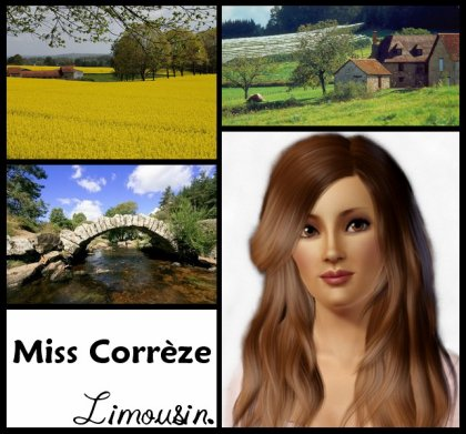 ____  MiSS LiMOUSiN  ____