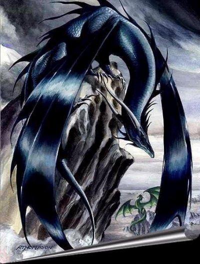 le dragons des vents