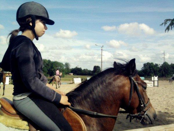 ' Le cheval est un cadeau de Dieu à l'homme. '