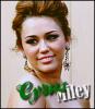 mileycyrus-news-x