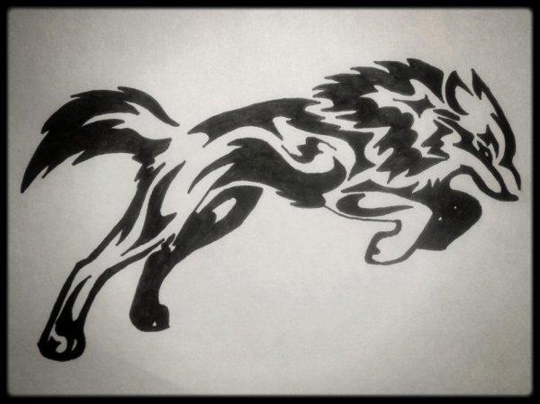 Un loup..