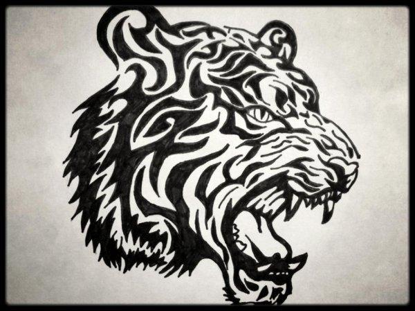 Un tigre !