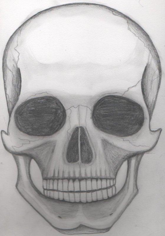 Un crâne.. Manque d'inspi ^^'