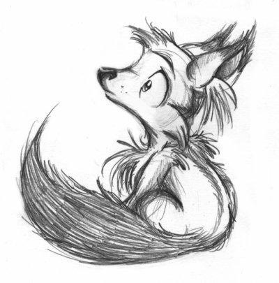 Bébé loup