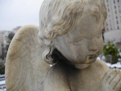 Les anges sous la neige...
