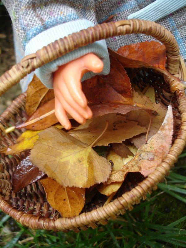Les feuilles mortes se ramassent à la pelle...