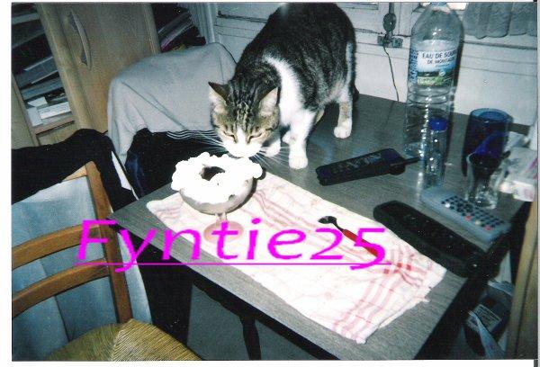 Fyntie en 2003