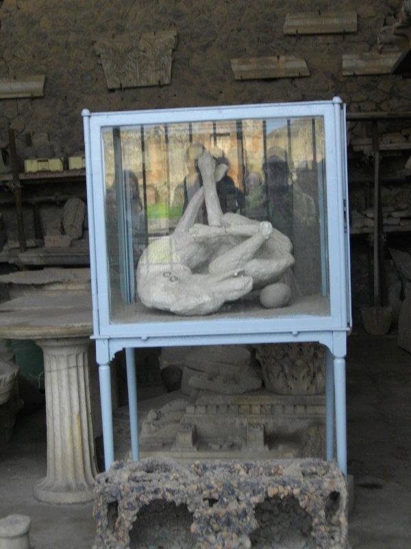 Pompéi <3