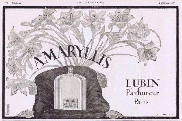 🌸Lubin ✿ Amaryllis 🌸