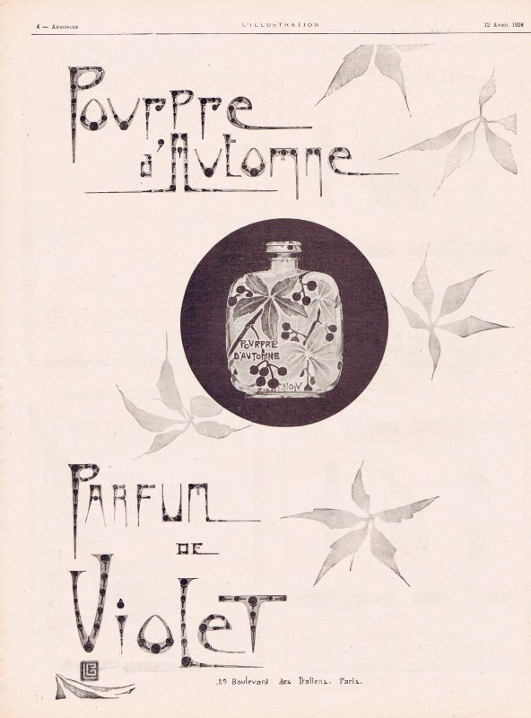 🌸 Violet ✿ Pourpre d'Automne 🌸