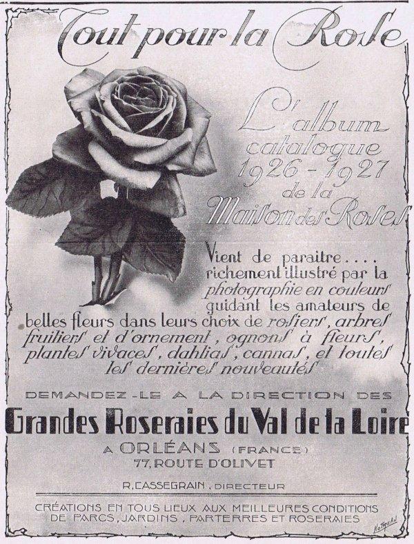 🌹 Les roses 🌹
