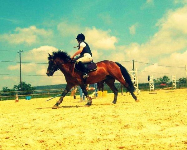 Un cheval a besoin de sa cavalière et une cavalière a besoin de son cheval!