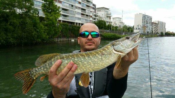 Petite après midi en seine avec un beau soleil mais pas beaucoup de poisson à l'horizon. 2 touches pour Bader et moi 1 touche et un brochet de 60 .Dur après midi