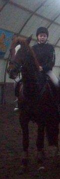 Il n'y a pas de secret plus intime que celui d'un cavalier & de son cheval ! ♥
