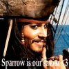 Sparrow-is-our-savior
